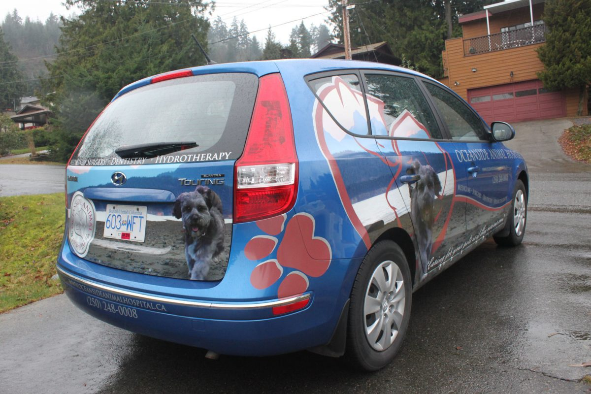 Oceanside Animal Hospital Partial Vehicle Wrap